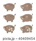 猪 亥 亥年のイラスト 40409454