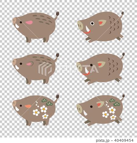 かわいい猪のイラスト 亥 干支 年賀素材 40409454