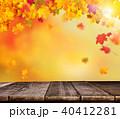 あき 秋 ボケの写真 40412281