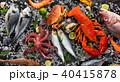 シーフード 海の幸 魚介類の写真 40415878