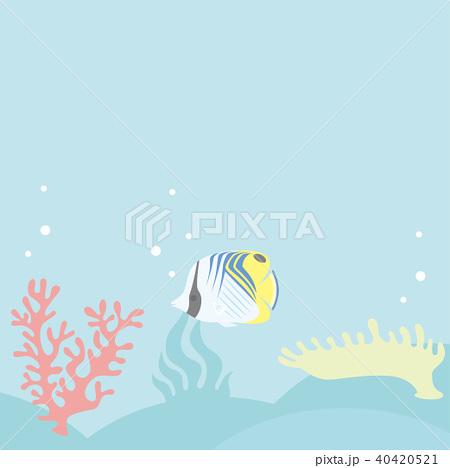 サンゴ礁 ベクターイラスト  40420521
