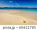 Pristine beach in British Virgin Islands 40422785