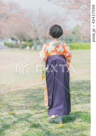 Sakura 40437099