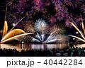 敦賀 花火大会 人々の写真 40442284