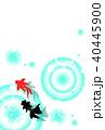金魚 夏 波紋のイラスト 40445900