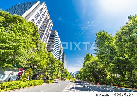 新緑と東京のビル群 40450257