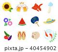 夏 アイコン ベクターのイラスト 40454902
