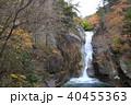 秋の仙娥滝と虹(御嶽昇仙峡) 40455363