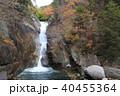 秋の仙娥滝と虹(御嶽昇仙峡) 40455364