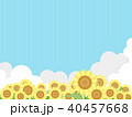 向日葵 40457668