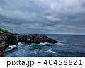 城ケ崎 城ケ崎海岸 海岸の写真 40458821