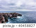城ケ崎 城ケ崎海岸 海岸の写真 40458827