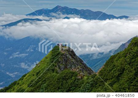 西穂独標と雲上の乗鞍岳 40461850