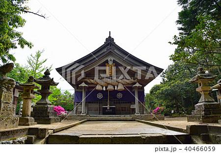 白兎神社 40466059