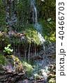 風景 水源 湧き水の写真 40466703