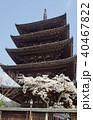 八坂の塔と桜 40467822