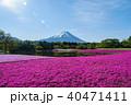 富士山 芝桜 春の写真 40471411