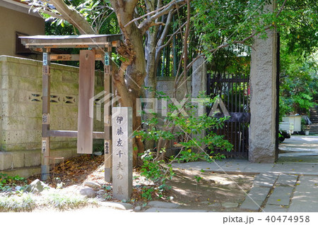 伊藤佐千夫の墓 40474958