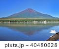 山中湖と富士山-7548 40480628