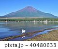 山中湖と逆さ富士-7552 40480633