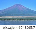 山中湖畔からの富士山-7557 40480637