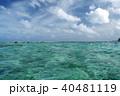 グアムの澄んだ青い海  40481119