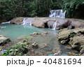 滝 (YS Falls) 40481694