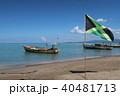 カリブ海 40481713