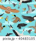 鳥 ベクター ふくろうのイラスト 40483105