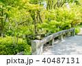日本庭園 しあわせの村 橋の写真 40487131