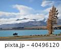 テカポ湖 湖 風景の写真 40496120