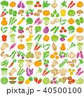 野菜 アイコン セットのイラスト 40500100