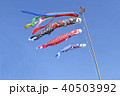 鯉のぼり 端午の節句 年中行事の写真 40503992