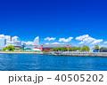 神奈川 横浜みなとみらいの風景(象の鼻パークより) 40505202
