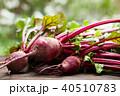 ビーツ テーブルビーツ 野菜の写真 40510783