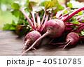 ビーツ テーブルビーツ 野菜の写真 40510785