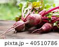 ビーツ テーブルビーツ 野菜の写真 40510786
