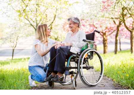 Elderly grandmother in wheelchair with granddaughter in spring nature. 40512357