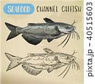 シーフード 海の幸 魚介類のイラスト 40515603