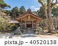 竈門神社 秋 宝満宮の写真 40520138