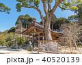 竈門神社 秋 宝満宮の写真 40520139