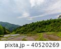 宮城丸森 沢尻の棚田 40520269