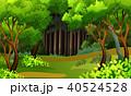 熱帯雨林 トロピカル 熱帯のイラスト 40524528