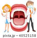歯医者 歯科医 歯科医師のイラスト 40525158