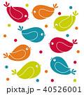 鳥 かわいい カラフルのイラスト 40526001