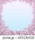 満開の桜 40526456