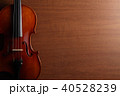 ヴァイオリン 40528239