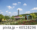 初夏の東山植物園 40528296