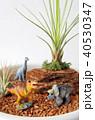 恐竜のジオラマ 40530347