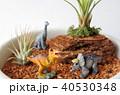 恐竜のジオラマ 40530348